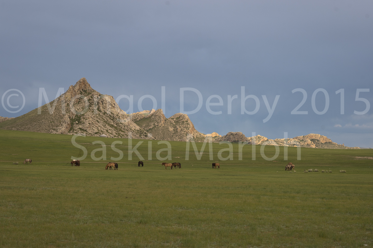 2015-08-02-Start-line-horses-mongol-derby-2015-by-saskia-marloh-242