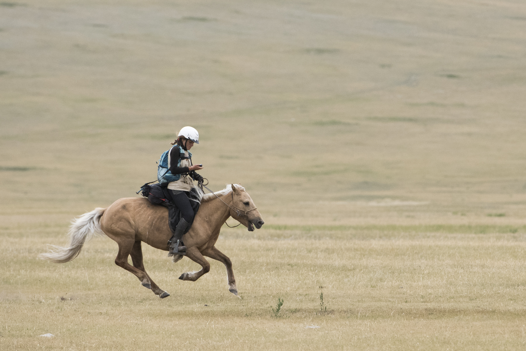2015-08-11-Day 7 Mongol-Derby-Urtuu-23-28- 18 year old Elise from France heading for the finishing line to become 2nd place at the 2015 Mongol Derby